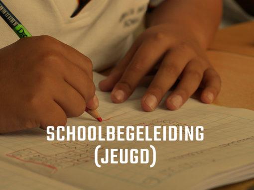 Schoolbegeleiding